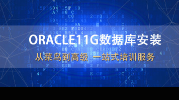 ORACLE11g数据库安装(ORACLE11G/ORACLE12C/SQL/PLSQL/实战)
