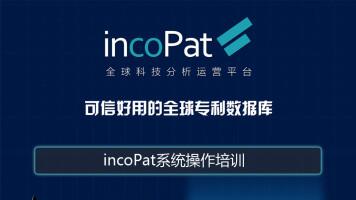 incoPat系统使用培训
