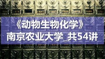 K8153_《动物生物化学》_南京农业大学_共54讲