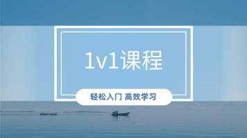 1v1直播课程