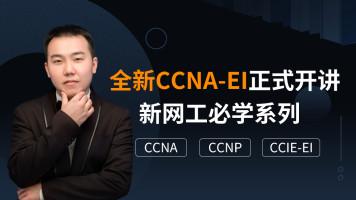 【新网工】零基础入门实战CCNA/CCNP/CCIE