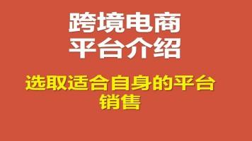 热门跨境电商平台介绍(eBay, 亚马逊,Wish,速卖通)