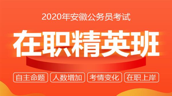 2020安徽公务员考试在职精英班