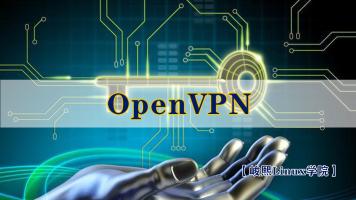 企业十大应用-openvpn