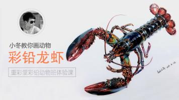 写实彩铅动物篇—小龙虾【重彩堂教育】