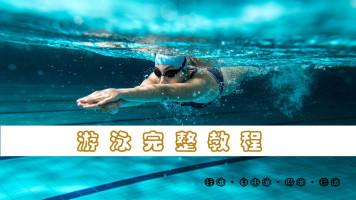 零基础到游泳健将完整教学视频课程