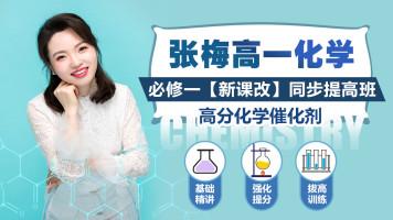 【张梅化学】2023高一化学必修一新课改版同步提高班带教材+答疑