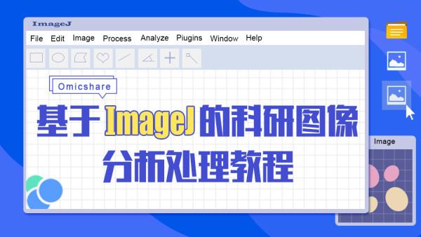 基于ImageJ的科研图像分析处理教程