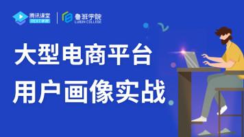 大型电商平台用户画像实战【鲁班学院】