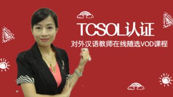 国际对外汉语教师考试:中华文化阐释与传播能力