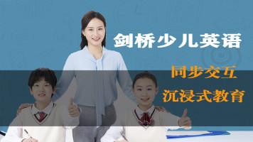 剑桥少儿英语预备级A中教外教同步进行小学英语提分必学刘117课时