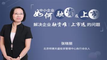 张晓丽:中小企业如何融资及上市