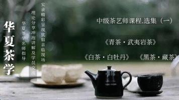 茶艺(师)培训课程——中级茶艺师课程•选集(二)