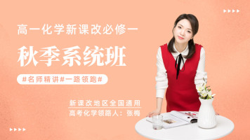 【张梅化学】2019高一化学新课改必修一同步提高精讲班
