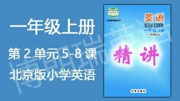 【精讲】北京版小学英语一年级(上) Unit 2(共4课)