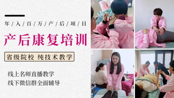 【零基础】喜月产后康复系统培训精英班