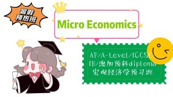 Economics微观经济培优AP/A-Level/ig/IB/澳加大学预科高中课程