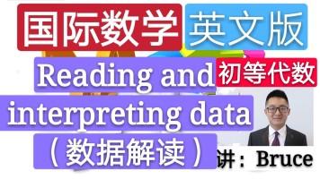 【精品课】小学国际数学英文版(初等代数)(数据解读)