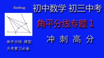 初中数学 初三中考 角平分线专题