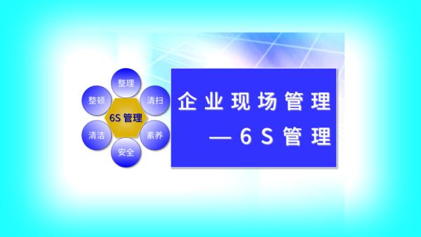 企业现场管理-6S管理