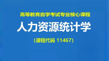 自考11467人力资源统计学通关课程