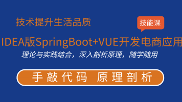 IDEA版前后端分离的SpringBoot+VUE开发电商应用教程