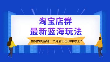 2019淘宝店群无货源终极蓝海|0违规|出单快|精细化淘宝运营