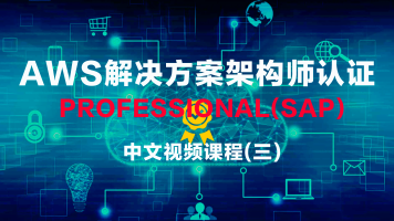 AWS解决方案架构师认证 Professional中文视频课程2020(三)