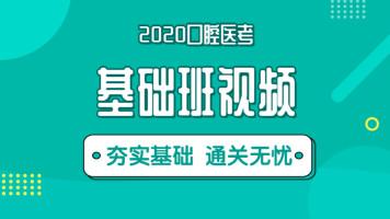 牙典教育-2020口腔执业/助理医师vip基础精讲班录播视频