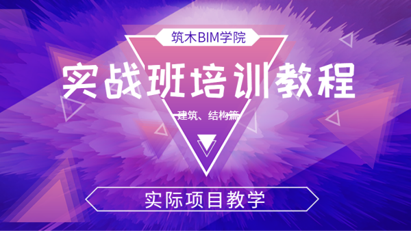 BIM软件Revit实战培训教程-建筑、结构篇(实际项目为例)