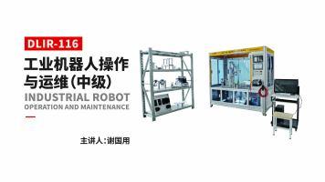 工业机器人操作与运维DLIR-116(中级)