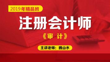 2020年注册会计师精品班【审计】