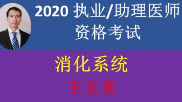 2020精诚医考王文龙-消化-执业医师/助理医师资格考试-精讲+真题