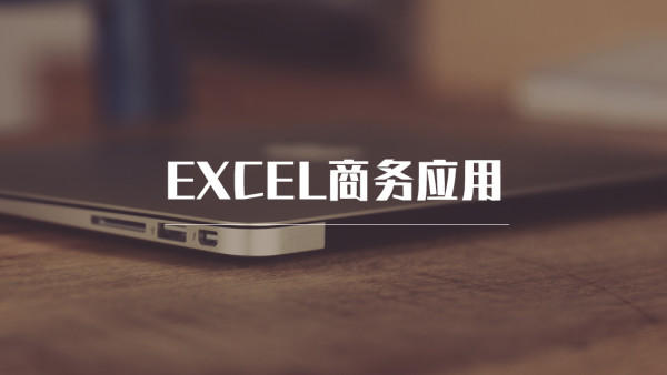 Excel商务应用初级