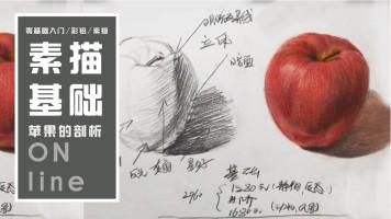 【视频】零基础素描基础苹果分析解剖静物素描/彩铅/油画水彩