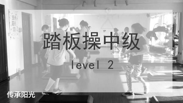 L12实录课中级踏板操