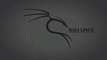 白帽子黑客手把手教你:如何使用KaliLinux进行渗透测试与攻防?