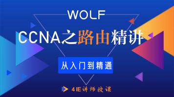 CCNA网络工程师速成之路由综合讲授CCNA/HCIA/CCNP/HCIP