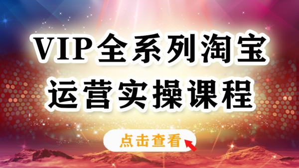 【巨皇教育】VIP实战运营班 从零布局全系优化店铺教程