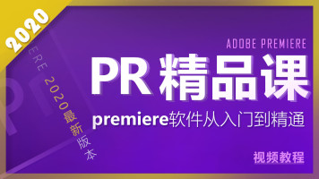 premiere2020最新版本从入门到精通精品课程 自媒体短时剪辑