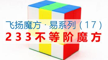 不等阶233魔方复原教程【飞扬魔方·易系列】