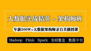 大数据精英班|Hadoop/Spark/Flink/实时数仓/数据中台【大讲台】