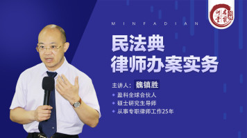 魏镇胜:民法典律师办案实务