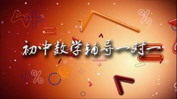 初中数学辅导(一线老师一对一辅导)【唐永召】