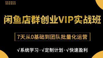 闲鱼无货源电商老师亲带全系统VIP实操班【风鹏电商】