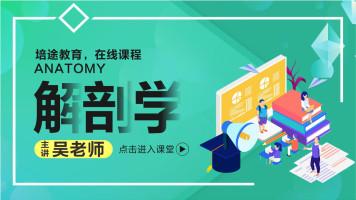 2020陕西成考通关视频网课 医学综合 解剖学