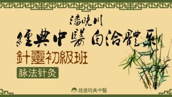 潘晓川经典中医自洽体系针灵初级班(脉法针灸)