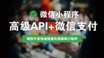微信小程序高级API+微信支付 微信开发/微信商城/电商微商小程序