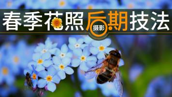 春季花儿摄影后期技法