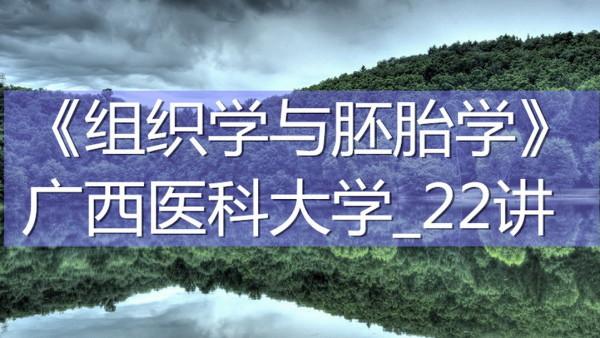 K7739_《组织学与胚胎学》_广西医科大学_22讲